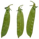 Green Snow Peas